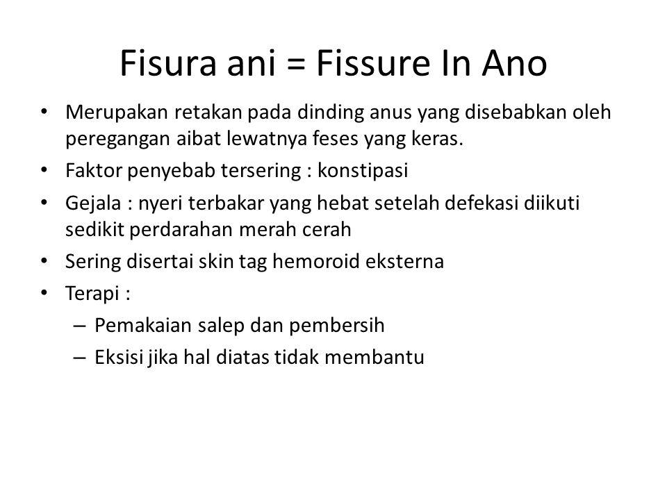 Fisura ani = Fissure In Ano Merupakan retakan pada dinding anus yang disebabkan oleh peregangan aibat lewatnya feses yang keras. Faktor penyebab terse