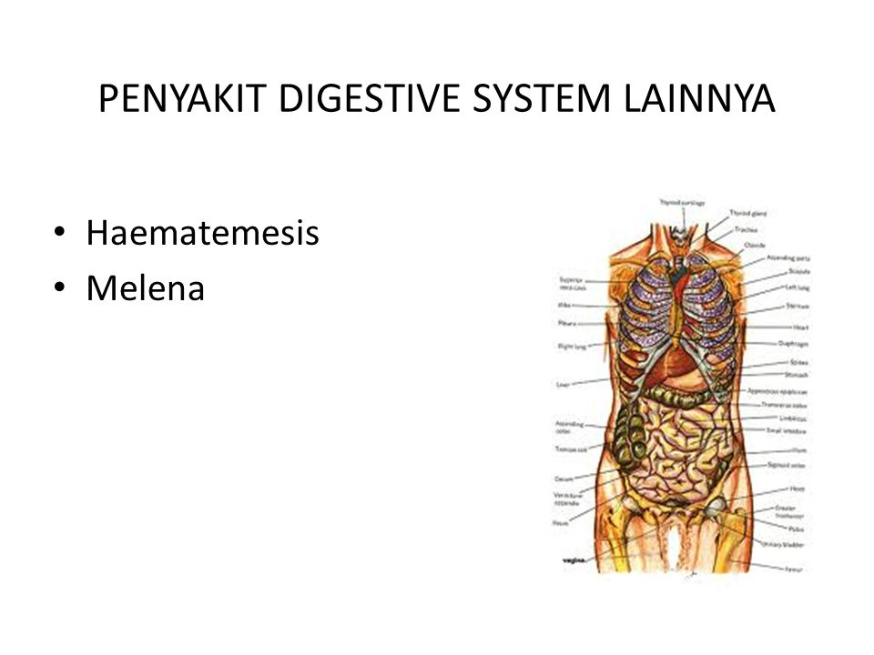 PENYAKIT DIGESTIVE SYSTEM LAINNYA Haematemesis Melena