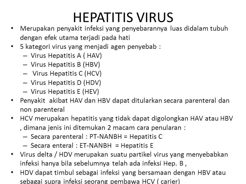 HEPATITIS VIRUS Merupakan penyakit infeksi yang penyebarannya luas didalam tubuh dengan efek utama terjadi pada hati 5 kategori virus yang menjadi age