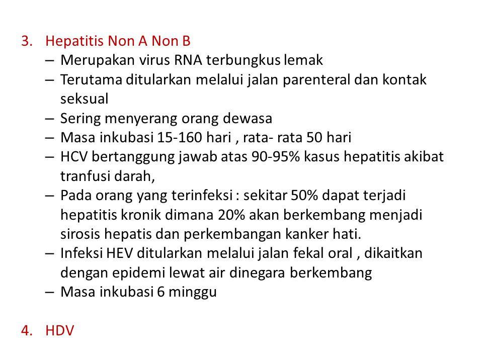 – Merupakan virus RNA terbungkus lemak – Terutama ditularkan melalui jalan parenteral dan kontak seksual – Sering menyerang orang dewasa – Masa inkuba