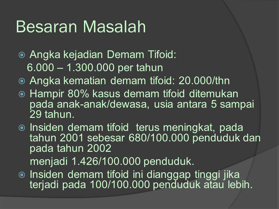 Besaran Masalah  Angka kejadian Demam Tifoid: 6.000 – 1.300.000 per tahun  Angka kematian demam tifoid: 20.000/thn  Hampir 80% kasus demam tifoid d