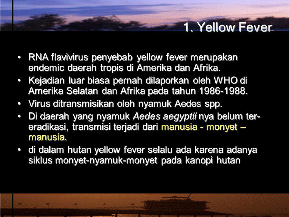 1. Yellow Fever RNA flavivirus penyebab yellow fever merupakan endemic daerah tropis di Amerika dan Afrika.RNA flavivirus penyebab yellow fever merupa