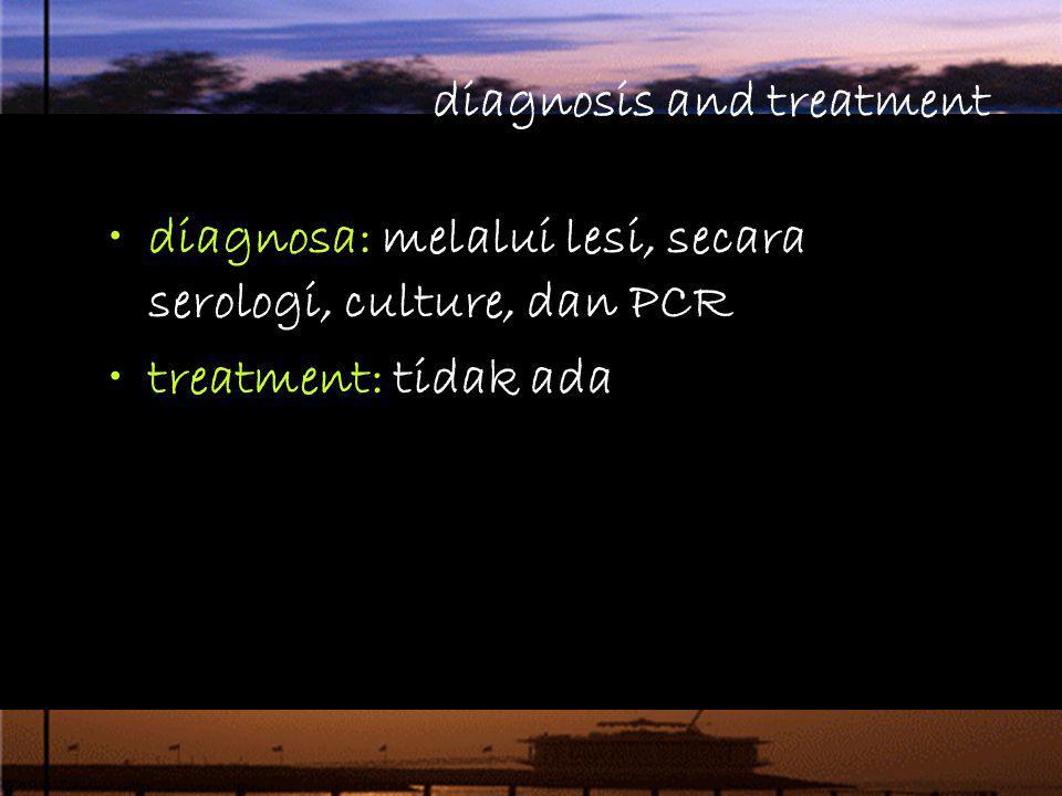 diagnosis and treatment diagnosa: melalui lesi, secara serologi, culture, dan PCR treatment: tidak ada