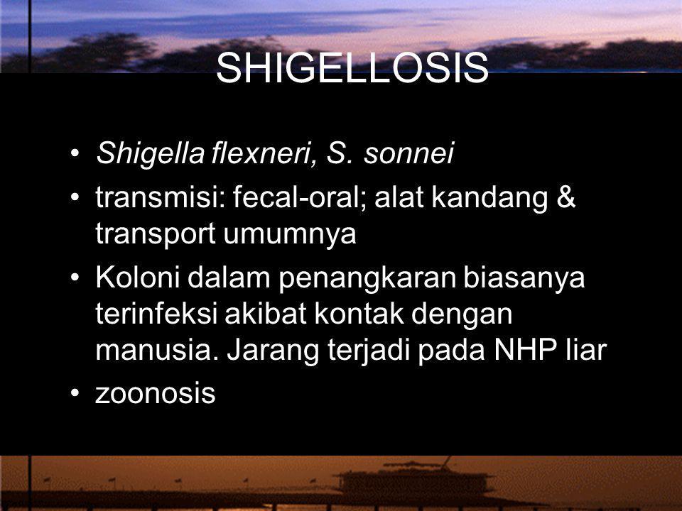 SHIGELLOSIS Shigella flexneri, S. sonnei transmisi: fecal-oral; alat kandang & transport umumnya Koloni dalam penangkaran biasanya terinfeksi akibat k