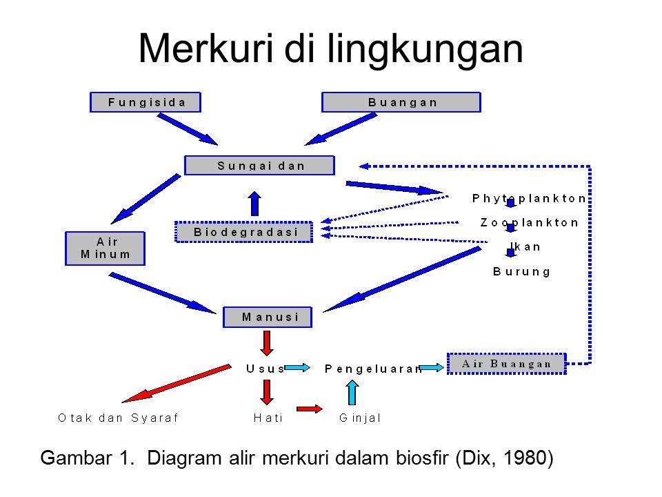Merkuri di lingkungan Gambar 1. Diagram alir merkuri dalam biosfir (Dix, 1980)