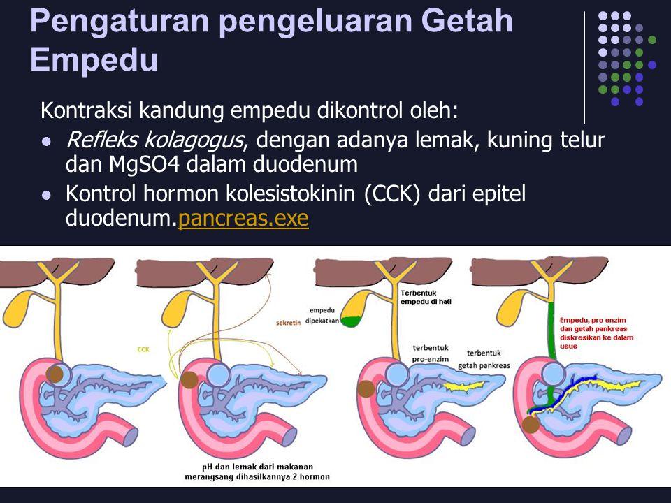 Pengaturan pengeluaran Getah Empedu Kontraksi kandung empedu dikontrol oleh: Refleks kolagogus, dengan adanya lemak, kuning telur dan MgSO4 dalam duodenum Kontrol hormon kolesistokinin (CCK) dari epitel duodenum.pancreas.exepancreas.exe
