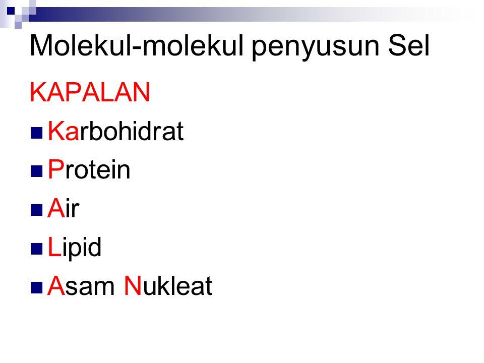 Macam Sel Prokariot TTanpa membran inti sel CContoh: Bakteri Eukariot MMemiliki membran inti sel CContoh: Tumbuhan, Hewan, Jamur