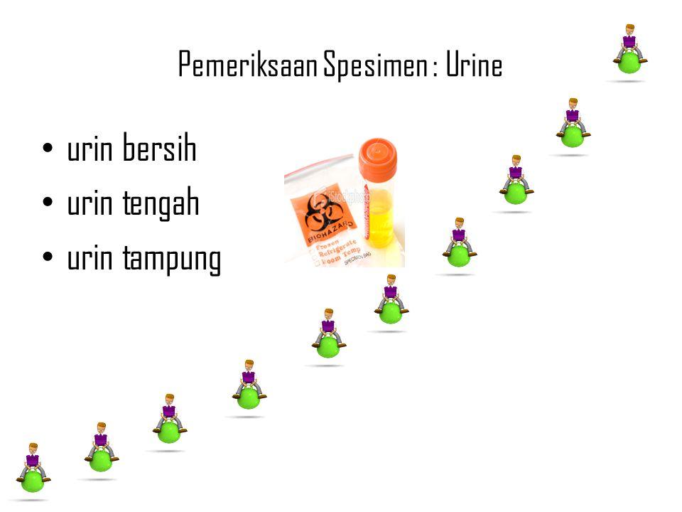 Pemeriksaan Spesimen : Urine urin bersih urin tengah urin tampung