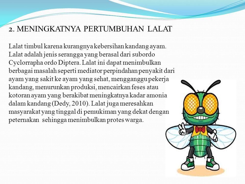 2. MENINGKATNYA PERTUMBUHAN LALAT Lalat timbul karena kurangnya kebersihan kandang ayam. Lalat adalah jenis serangga yang berasal dari subordo Cyclorr