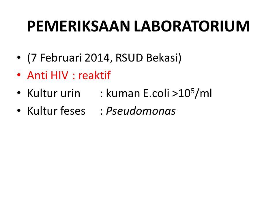PEMERIKSAAN LABORATORIUM (7 Februari 2014, RSUD Bekasi) Anti HIV: reaktif Kultur urin: kuman E.coli >10 5 /ml Kultur feses: Pseudomonas