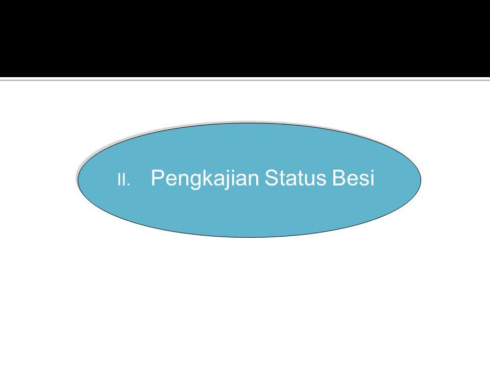 II. Pengkajian Status Besi