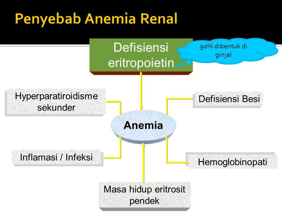 Defisiensi eritropoietin Defisiensi Besi Hemoglobinopati Masa hidup eritrosit pendek Hyperparatiroidisme sekunder Inflamasi / Infeksi Anemia 90% diben