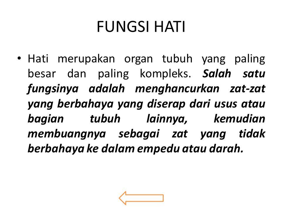 FUNGSI HATI Hati merupakan organ tubuh yang paling besar dan paling kompleks.