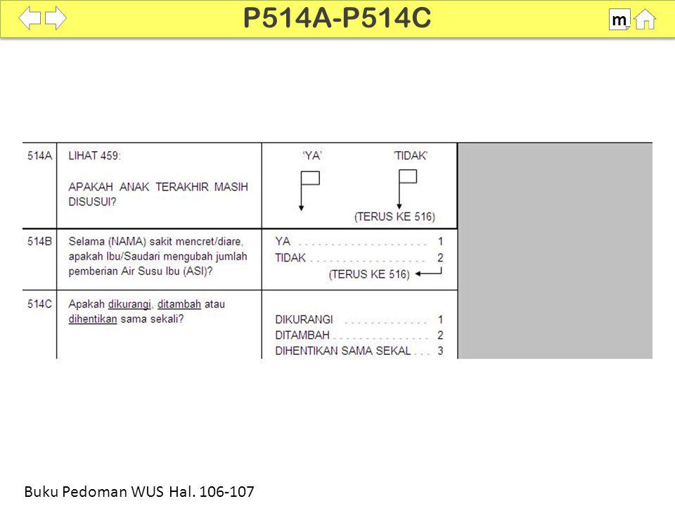 100% SDKI 2012 P514A-P514C m Buku Pedoman WUS Hal. 106-107