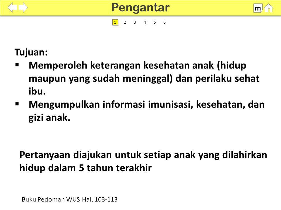 100% SDKI 2012 Pengantar m Buku Pedoman WUS Hal. 103-113 2 2