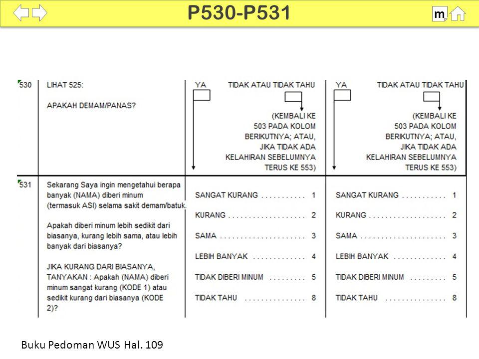 100% SDKI 2012 P530-P531 m Buku Pedoman WUS Hal. 109