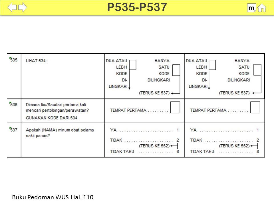 100% SDKI 2012 P535-P537 m Buku Pedoman WUS Hal. 110