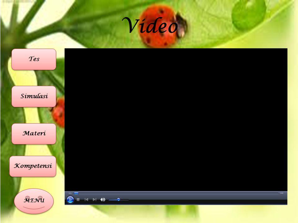 Video MENU Materi Simulasi Tes Kompetensi
