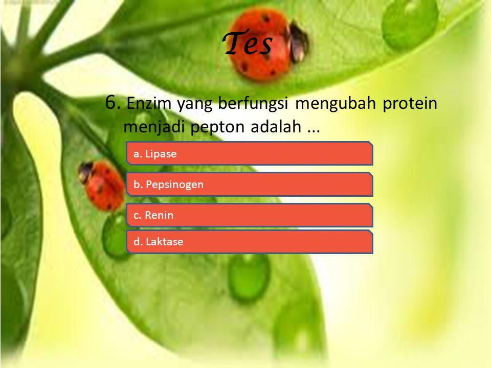 Tes 6.Enzim yang berfungsi mengubah protein menjadi pepton adalah...