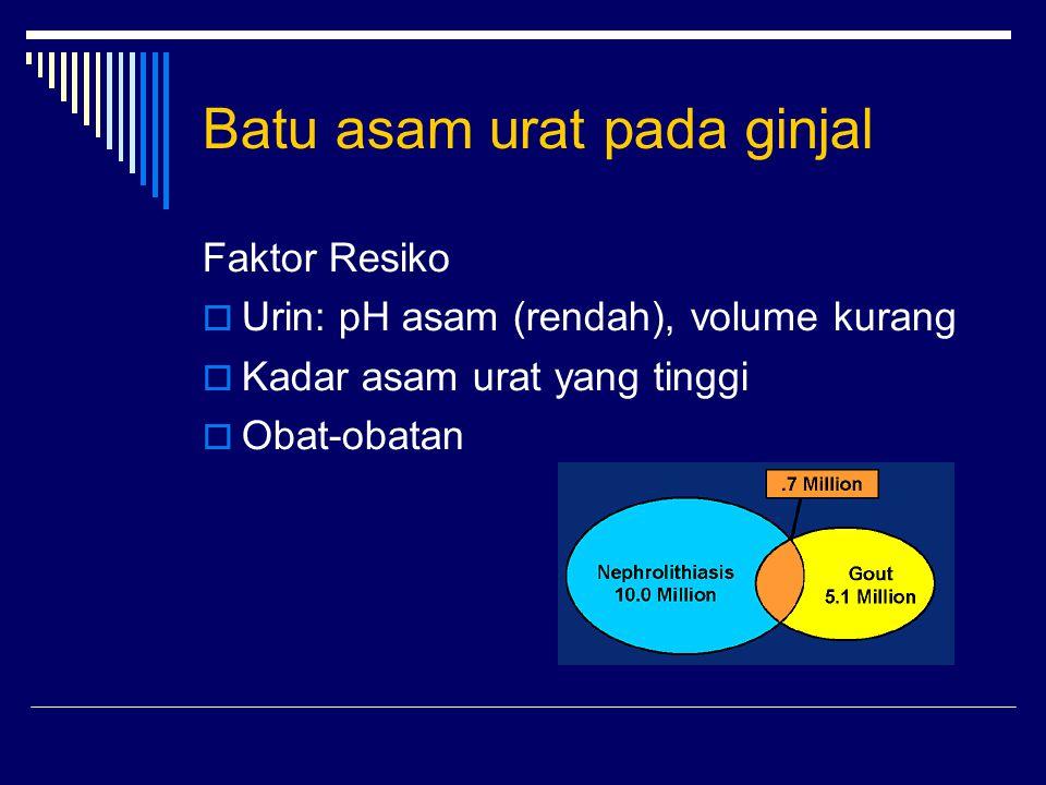 Batu asam urat pada ginjal Faktor Resiko  Urin: pH asam (rendah), volume kurang  Kadar asam urat yang tinggi  Obat-obatan