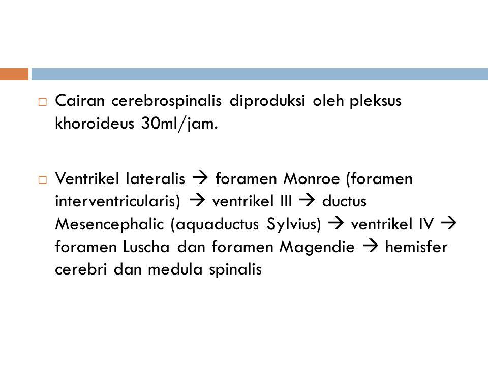  Cairan cerebrospinalis diproduksi oleh pleksus khoroideus 30ml/jam.  Ventrikel lateralis  foramen Monroe (foramen interventricularis)  ventrikel