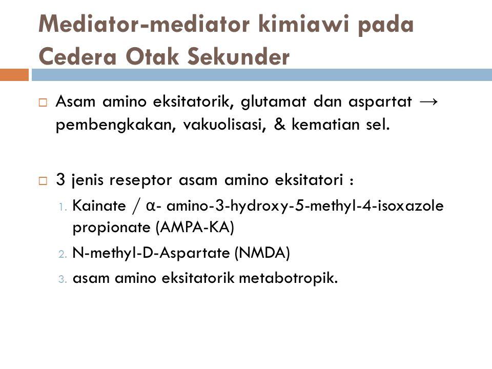 Mediator-mediator kimiawi pada Cedera Otak Sekunder  Asam amino eksitatorik, glutamat dan aspartat → pembengkakan, vakuolisasi, & kematian sel.  3 j