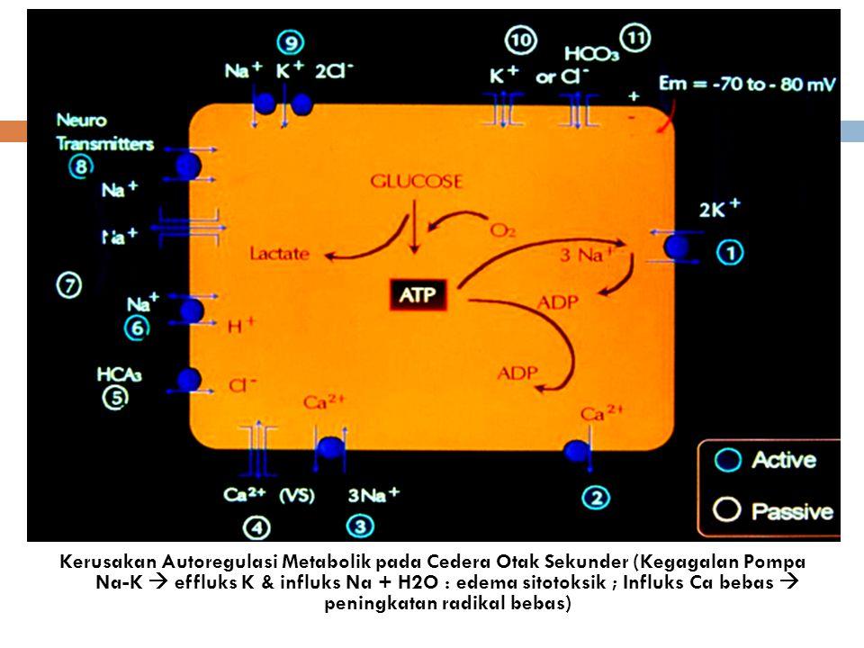 Kerusakan Autoregulasi Metabolik pada Cedera Otak Sekunder (Kegagalan Pompa Na-K  effluks K & influks Na + H2O : edema sitotoksik ; Influks Ca bebas