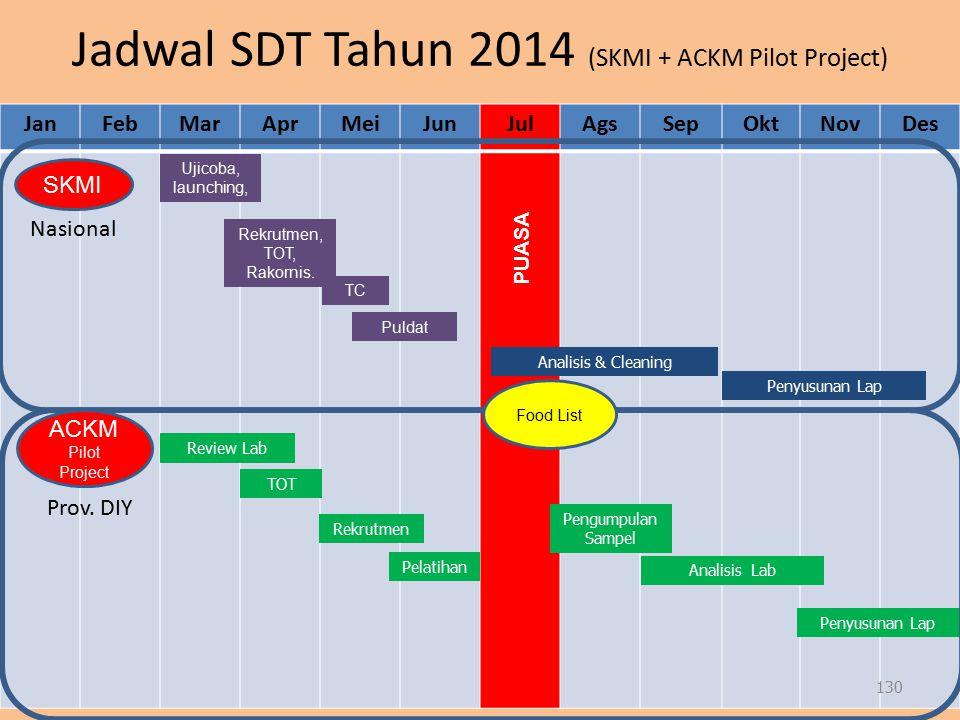 Jadwal SDT Tahun 2014 (SKMI + ACKM Pilot Project) JanFebMarAprMeiJunJulAgsSepOktNovDes Ujicoba, launching, Analisis & Cleaning Rekrutmen Pengumpulan S