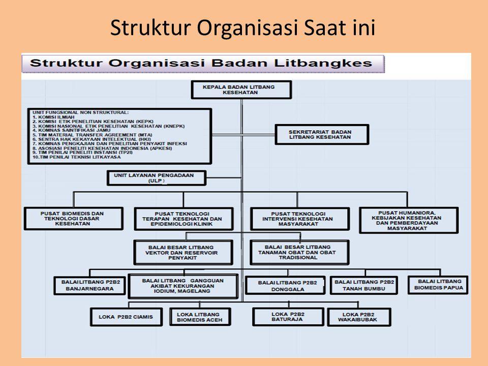 Permenkes no. 1144 Tahun 2010 Struktur Organisasi Saat ini