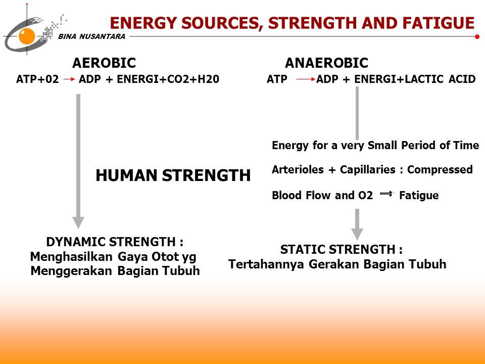 BINA NUSANTARA ENERGY SOURCES, STRENGTH AND FATIGUE AEROBIC ANAEROBIC ATP+02 ADP + ENERGI+CO2+H20 ATP ADP + ENERGI+LACTIC ACID HUMAN STRENGTH Energy f