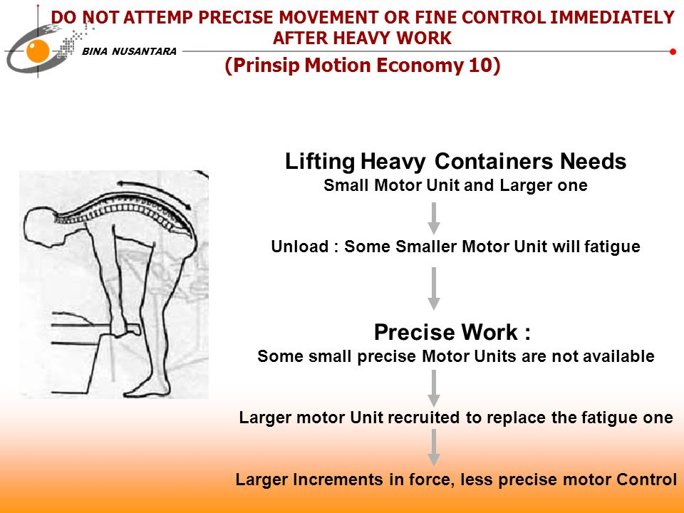 BINA NUSANTARA DO NOT ATTEMP PRECISE MOVEMENT OR FINE CONTROL IMMEDIATELY AFTER HEAVY WORK (Prinsip Motion Economy 10) Lifting Heavy Containers Needs Small Motor Unit and Larger one Unload : Some Smaller Motor Unit will fatigue Precise Work : Some small precise Motor Units are not available Larger motor Unit recruited to replace the fatigue one Larger Increments in force, less precise motor Control