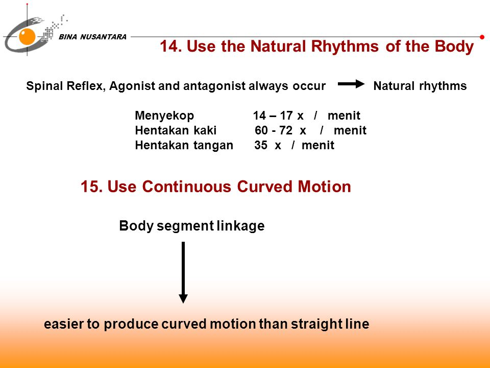 BINA NUSANTARA 14. Use the Natural Rhythms of the Body Spinal Reflex, Agonist and antagonist always occur Natural rhythms Menyekop 14 – 17 x / menit H