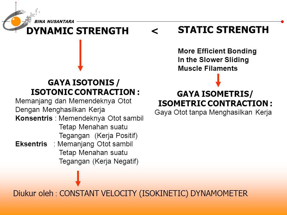 BINA NUSANTARA GAYA ISOTONIS / ISOTONIC CONTRACTION : Memanjang dan Memendeknya Otot Dengan Menghasilkan Kerja Konsentris : Memendeknya Otot sambil Te