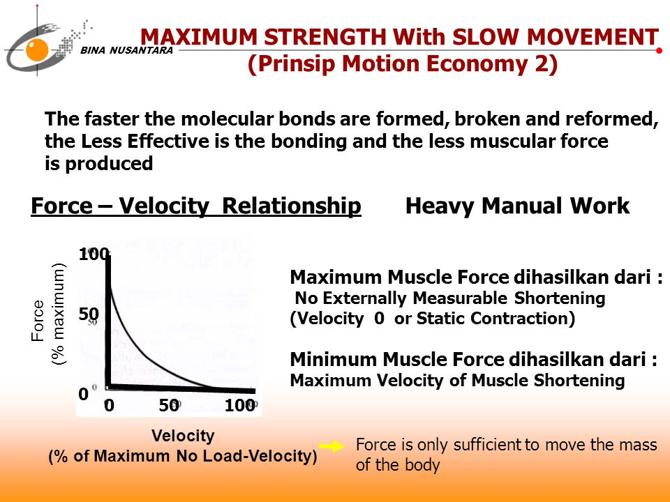 BINA NUSANTARA MAXIMUM STRENGTH With SLOW MOVEMENT (Prinsip Motion Economy 2) The faster the molecular bonds are formed, broken and reformed, the Less
