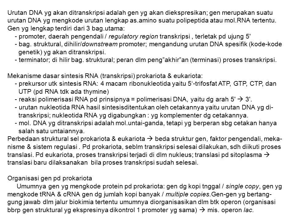 Urutan DNA yg akan ditranskripsi adalah gen yg akan diekspresikan; gen merupakan suatu urutan DNA yg mengkode urutan lengkap as.amino suatu polipeptid