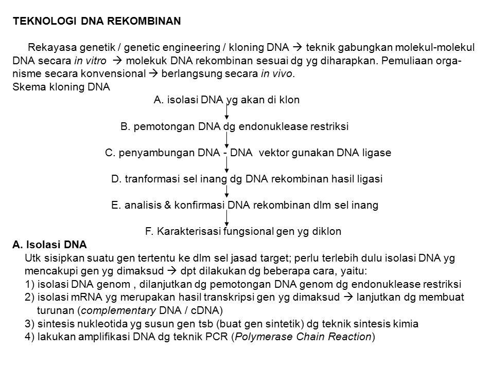 TEKNOLOGI DNA REKOMBINAN Rekayasa genetik / genetic engineering / kloning DNA  teknik gabungkan molekul-molekul DNA secara in vitro  molekuk DNA rek
