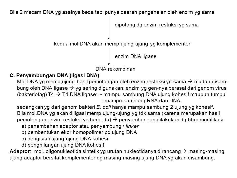 Bila 2 macam DNA yg asalnya beda tapi punya daerah pengenalan oleh enzim yg sama dipotong dg enzim restriksi yg sama kedua mol.DNA akan memp.ujung-uju