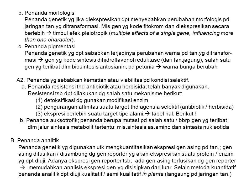 b. Penanda morfologis Penanda genetik yg jika diekspresikan dpt menyebabkan perubahan morfologis pd jaringan tan.yg ditransformasi. Mis.gen yg kode fi