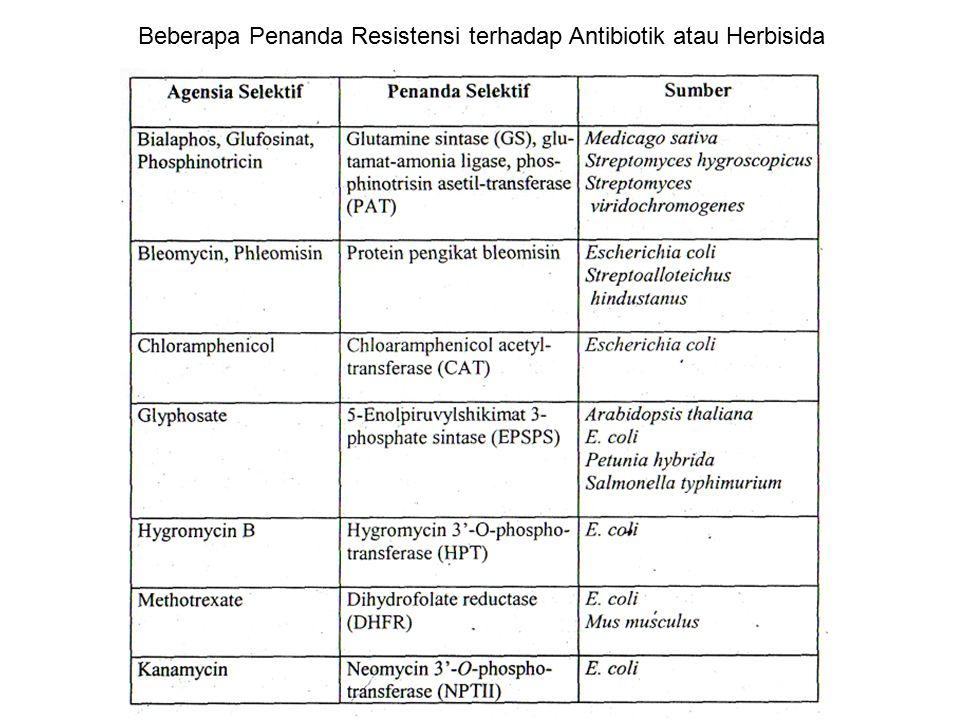 Beberapa Penanda Resistensi terhadap Antibiotik atau Herbisida
