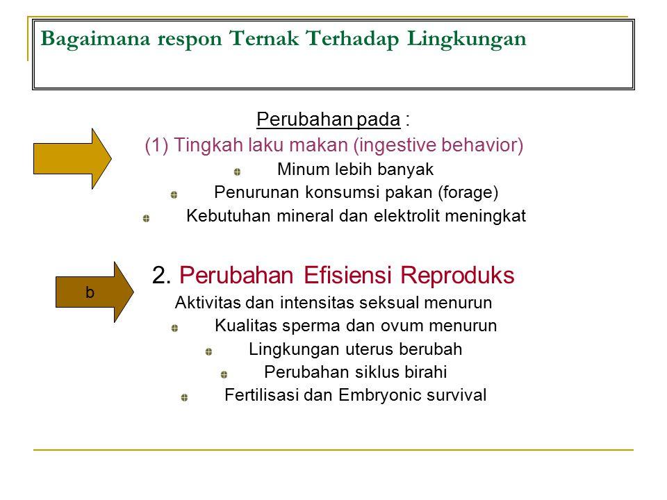 Bagaimana respon Ternak Terhadap Lingkungan Perubahan pada : (1) Tingkah laku makan (ingestive behavior) Minum lebih banyak Penurunan konsumsi pakan (forage) Kebutuhan mineral dan elektrolit meningkat 2.