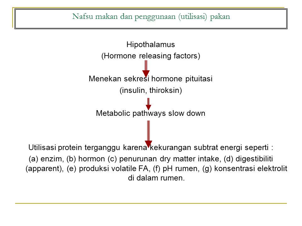Nafsu makan dan penggunaan (utilisasi) pakan Hipothalamus (Hormone releasing factors) Menekan sekresi hormone pituitasi (insulin, thiroksin) Metabolic pathways slow down Utilisasi protein terganggu karena kekurangan subtrat energi seperti : (a) enzim, (b) hormon (c) penurunan dry matter intake, (d) digestibiliti (apparent), (e) produksi volatile FA, (f) pH rumen, (g) konsentrasi elektrolit di dalam rumen.