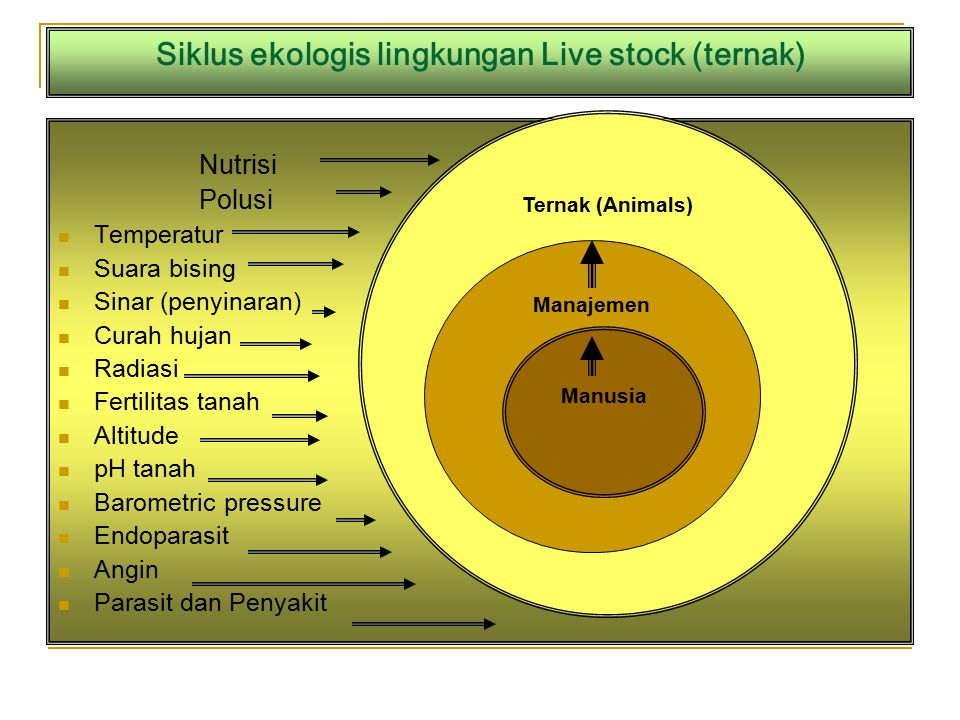 Siklus ekologis lingkungan Live stock (ternak) Nutrisi Polusi Temperatur Suara bising Sinar (penyinaran) Curah hujan Radiasi Fertilitas tanah Altitude