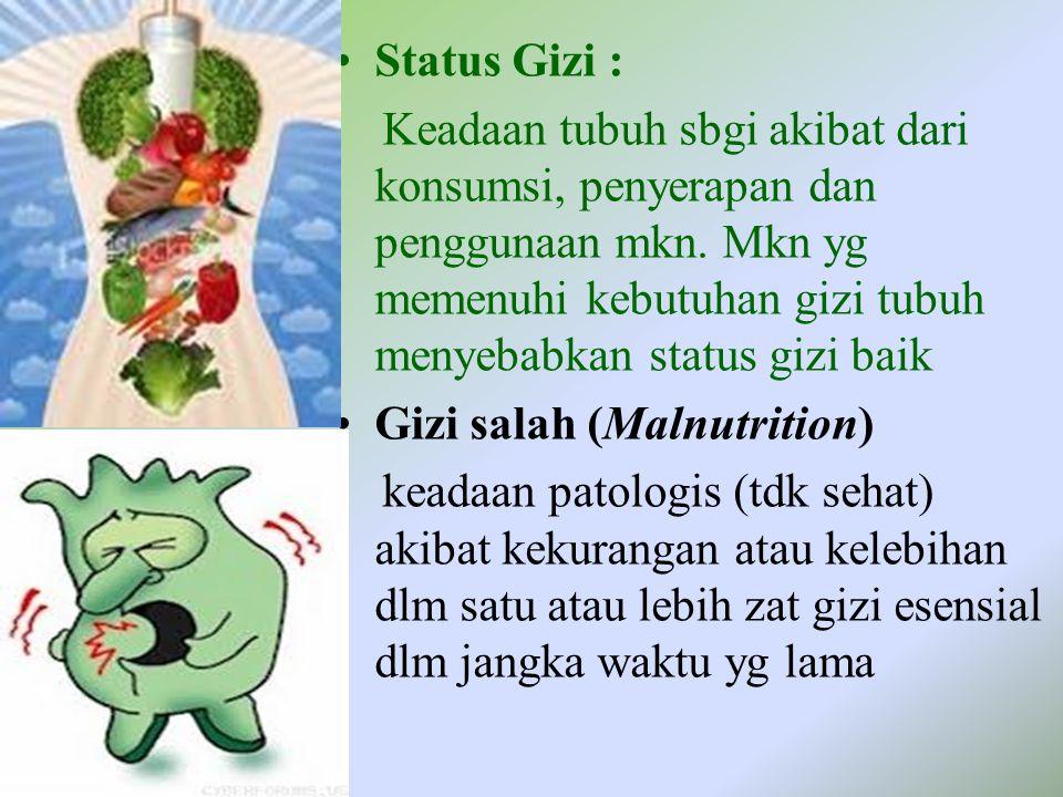Status Gizi : Keadaan tubuh sbgi akibat dari konsumsi, penyerapan dan penggunaan mkn. Mkn yg memenuhi kebutuhan gizi tubuh menyebabkan status gizi bai