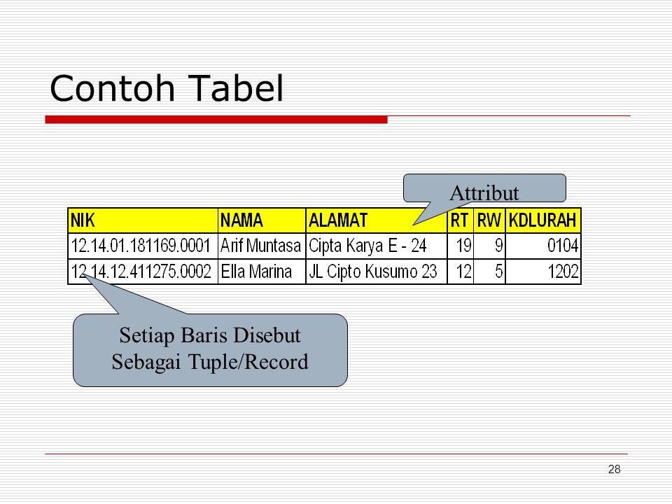 28 Contoh Tabel Attribut Setiap Baris Disebut Sebagai Tuple/Record