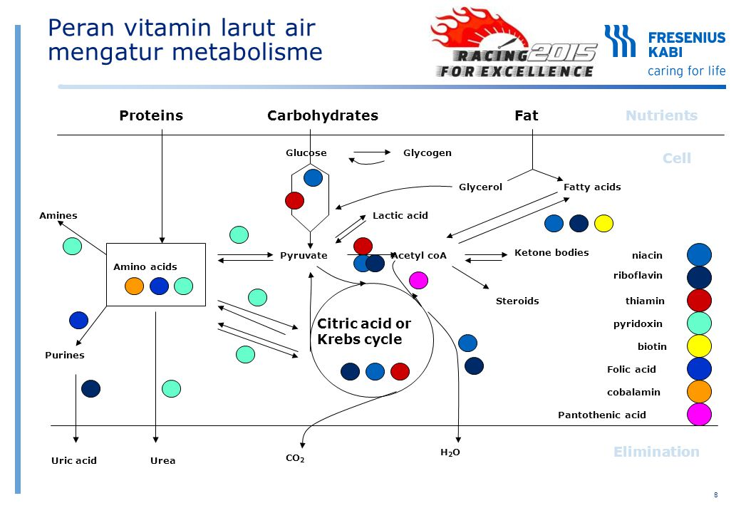 Komposisi sesuai rekomendasi VitaminFungsi EfekRekomendasiSoluvit®NVitalipid®N Adult DefisiensiAMA(Vial 10 ml)(Ampul 10 ml) Vitamin B1Metabolisme karbohidrat & lemakBeri-beri dengan efek3,0 mg2,5 mg (Thiamin) pada saraf & jantung Vitamin B2Metabolisme oksidatifLesi pada bibir, lidah & kulit3,6 mg (Riboflavin)(Komponen FMN/FAD) Vitamin B6Metabolisme asam amino & sintesa proteinLesi pada bibir, lidah & kulit,4,0 mg (Pyridoxin) anemia (pada anak) Vitamin B12Sintesa DNAAnemia, demyelinisasi neuron5,0 ug (Cyanocobalamin) NiacinMetabolisme oksidatifPellagra40,0 mg (Komponen NAD/NADP) Panthothenic AcidSintesa & metabolisme asam lemakBelum jelas15,0 mg burning feed syndrome BiotinMetabolisme asam amino, asam lemakDermatitis, rambut rontok,60,0 ug & karbohidratlidah pucat FolacinMetabolisme asam amino & sintesa DNAAnemia megaloblastik400,0 ug Vitamin CSintesa kolagen, antioksidan,Scurvy, gangguan100,0 mg (Ascorbic Acid)membantu absorpsi zat besipenyembuhan luka Vitamin APenglihatan, pertumbuhan & antioksidanRabun senja, xeropthalmia,3300 IU (Retinol) hiperkeratosis, follicular Vitamin DKeseimbangan kalsium & fosfatRickets (anak-anak)200 IU Osteomalacia Vitamin EAntioksidan dalam membran selAnemia hemolitik,10 ug (α-Tocopherol) Neuropathy & Myopathy Vitamin K1Koagulasi darah, kalsifikasi tulangGangguan perdarahan,150 ug Hypoprothrombinemia