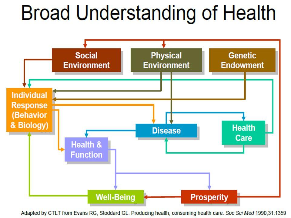 DISIPLIN (CABANG) ILMU KESEHATAN MASYARAKAT Epidemiologi Biostatistik Kesehatan Lingkungan Kesehatan Kerja Gizi Masyarakat Pendidikan (Promosi) Kesehatan Administrasi dan Kebijakan Kesehatan