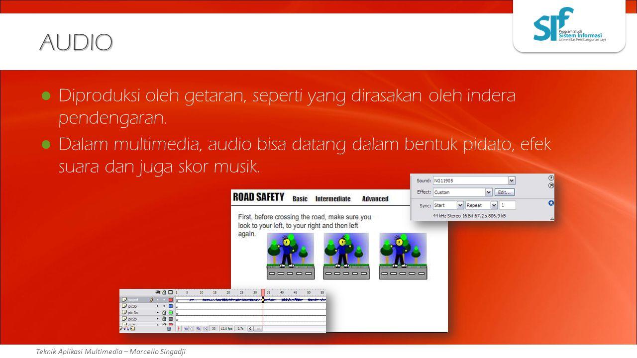 Teknik Aplikasi Multimedia – Marcello Singadji AUDIO Diproduksi oleh getaran, seperti yang dirasakan oleh indera pendengaran. Dalam multimedia, audio