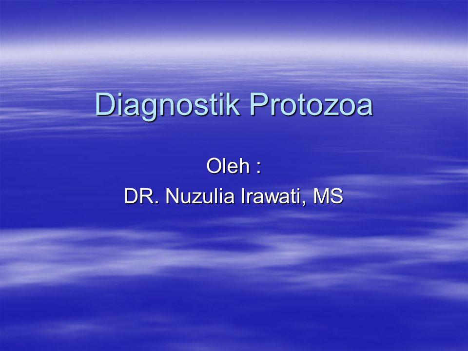 Diagnostik Protozoa Oleh : DR. Nuzulia Irawati, MS
