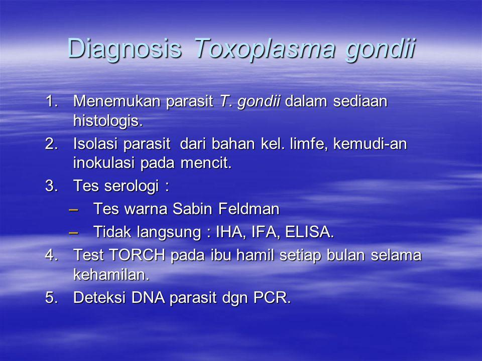 Diagnosis Toxoplasma gondii 1.Menemukan parasit T.