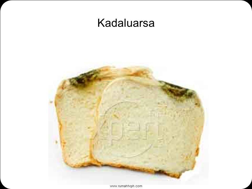 www.rumahfiqih.com Kadaluarsa